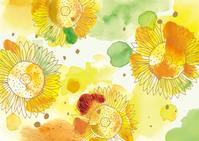 Sunflower watercolor  Illust