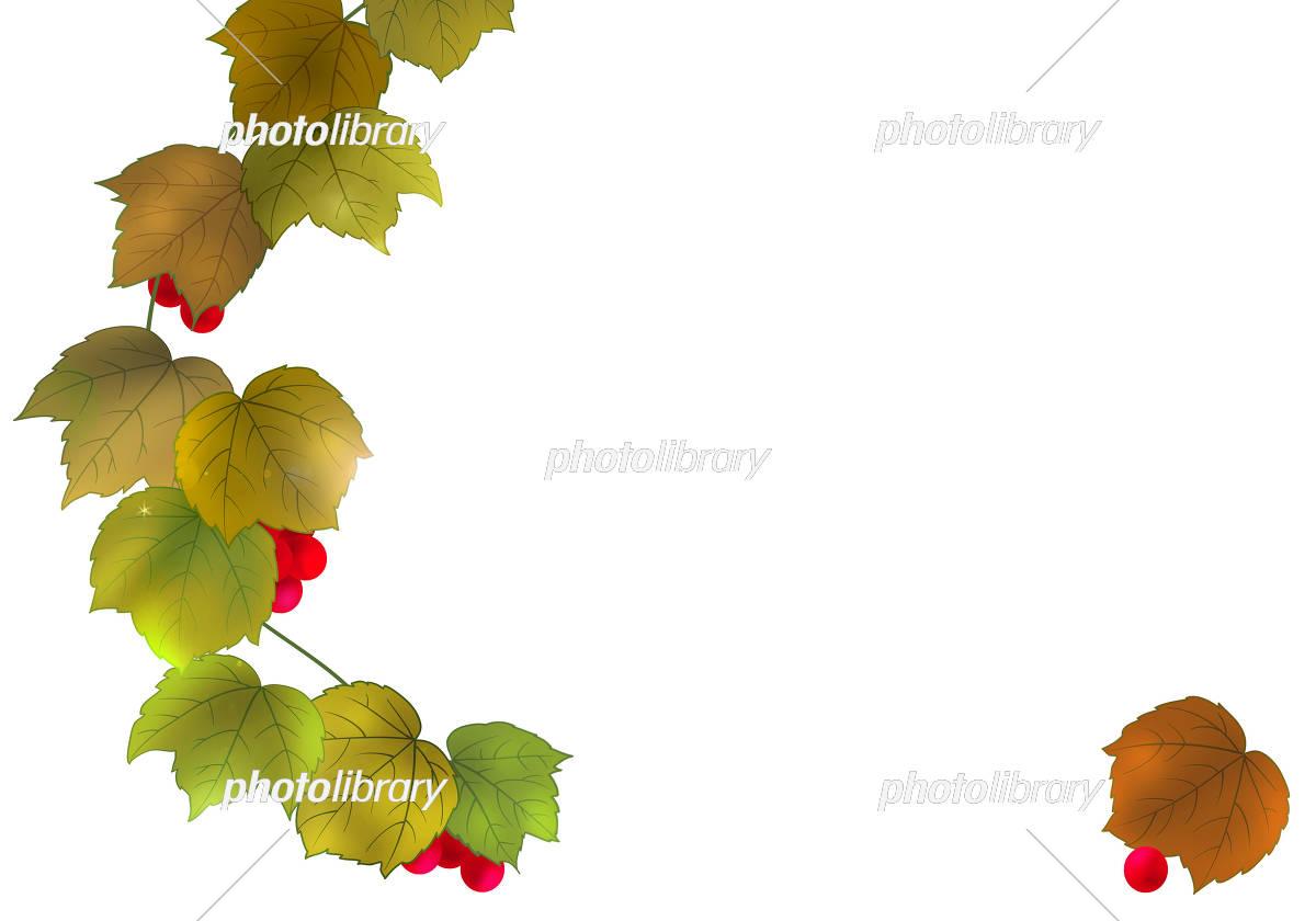 枯葉のイラスト イラスト素材 5271654 フォトライブラリー