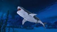 イラスト Sharks in the sea(5362102)