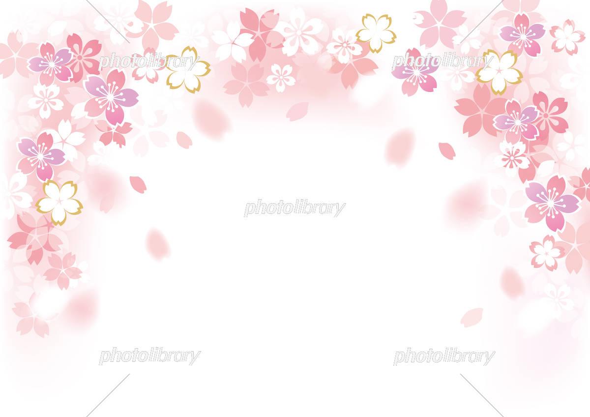 桜 フレーム イラスト素材 [ 5422980 ] - フォトライブラリー photolibrary