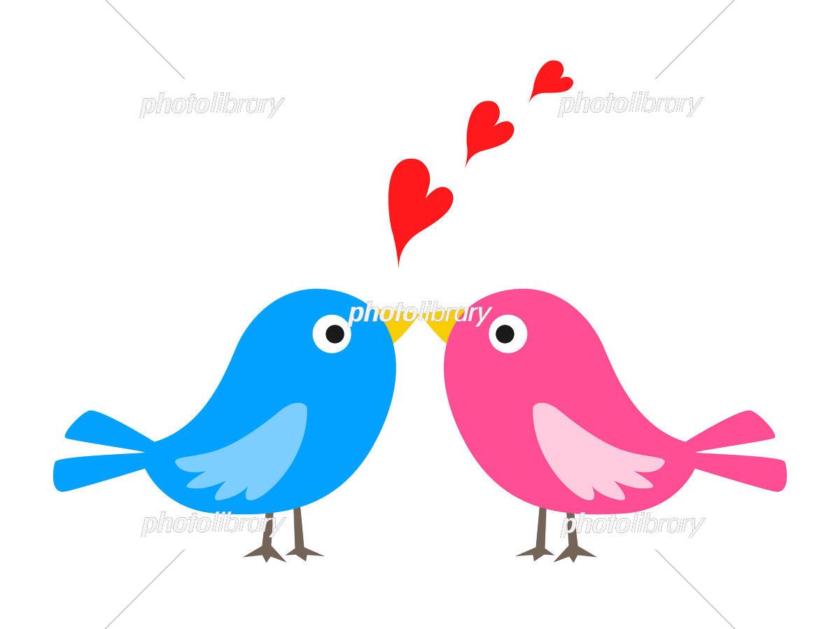 小鳥のカップル イラスト素材 5458511 フォトライブラリー