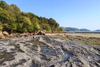 写真 Evening Bentenjima bridge pier rock(5589542)