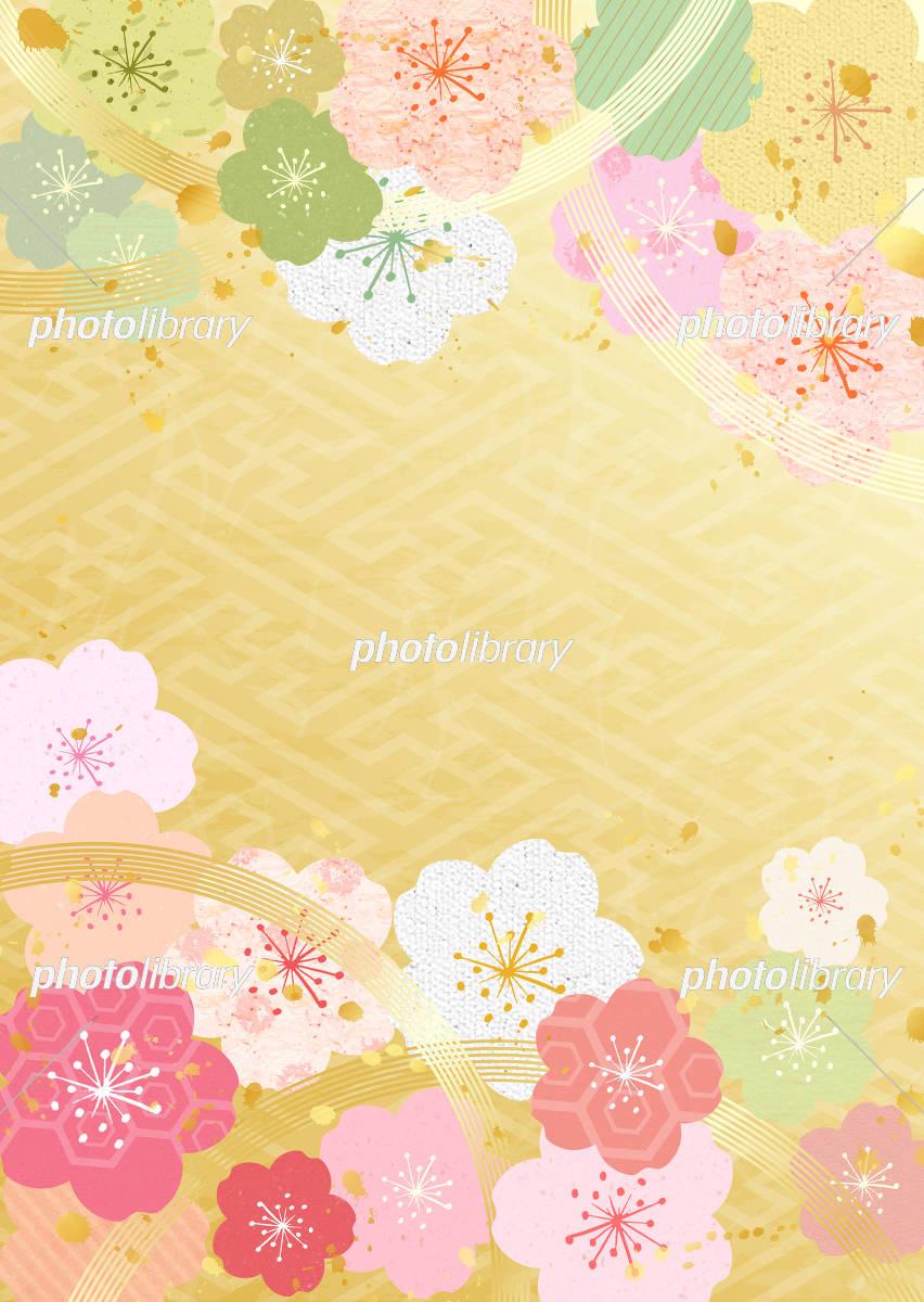 いろいろ桜 和柄 イラスト素材 フォトライブラリー Photolibrary
