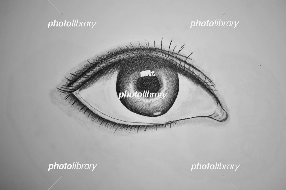 目のデッサン イラスト素材 5629598 フォトライブラリー Photolibrary