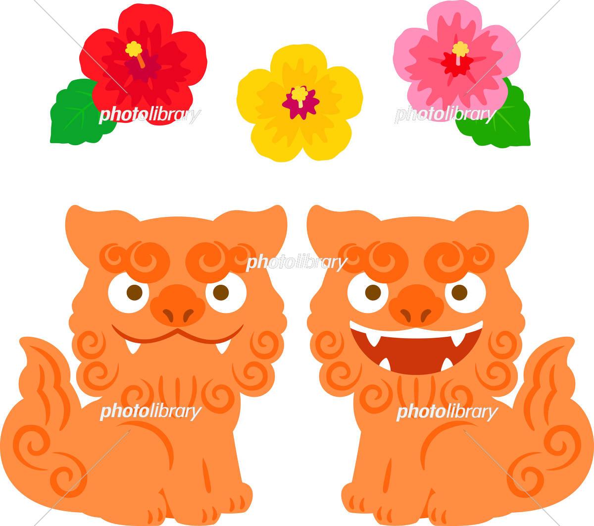シーサーとハイビスカスの花 イラスト素材 5665816 フォトライブ