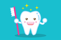 白い健康な歯と歯ブラシ healthy shiny white tooth and tooth brush 歯
