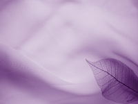 Fall of image Purple Stock photo [301074] Autumn