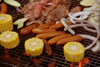 Barbecue Stock photo [309142] Carbon
